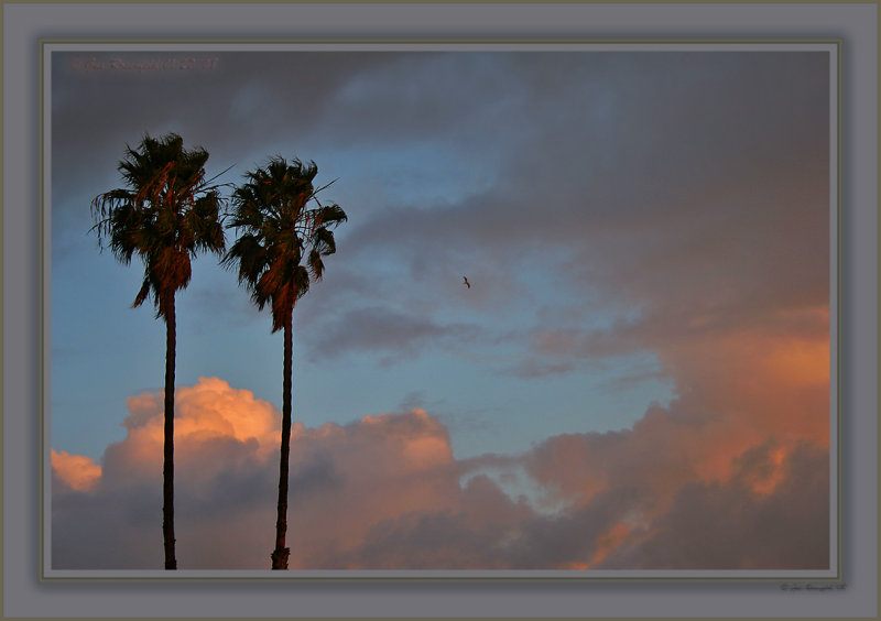 Wind, Change & Light Tonight