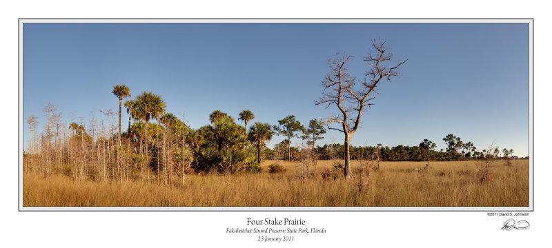 Four Stake Prairie Late PM.jpg
