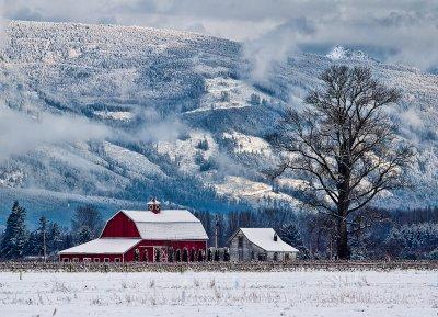 Snowy Skagit morning