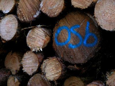 O.S.B.