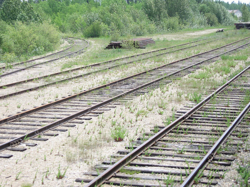 Sidings and wye along tracks in Fraserdale