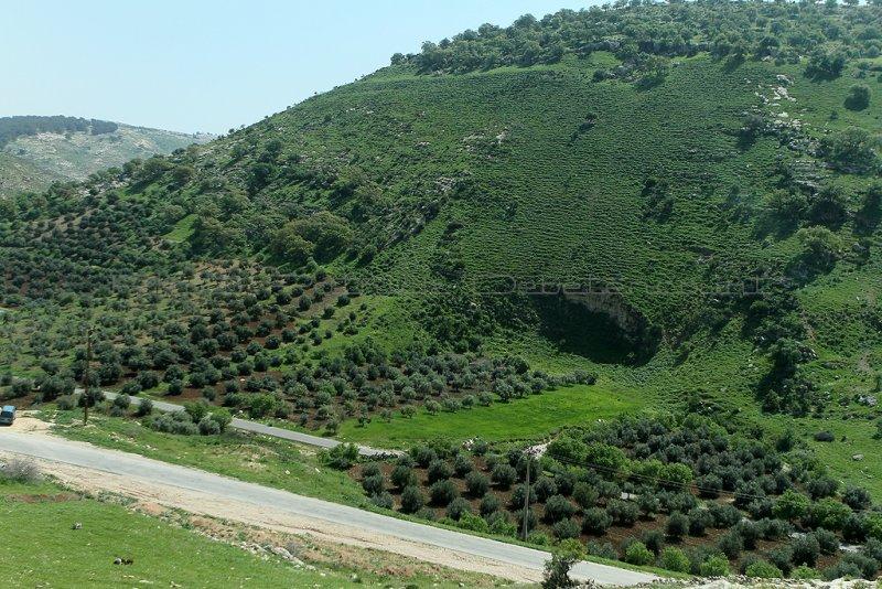 519 Voyage en Jordanie - IMG_1000_DxO Pbase.jpg