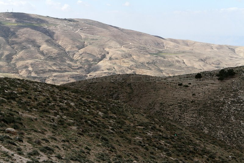 1013 Voyage en Jordanie - IMG_1514_DxO Pbase.jpg