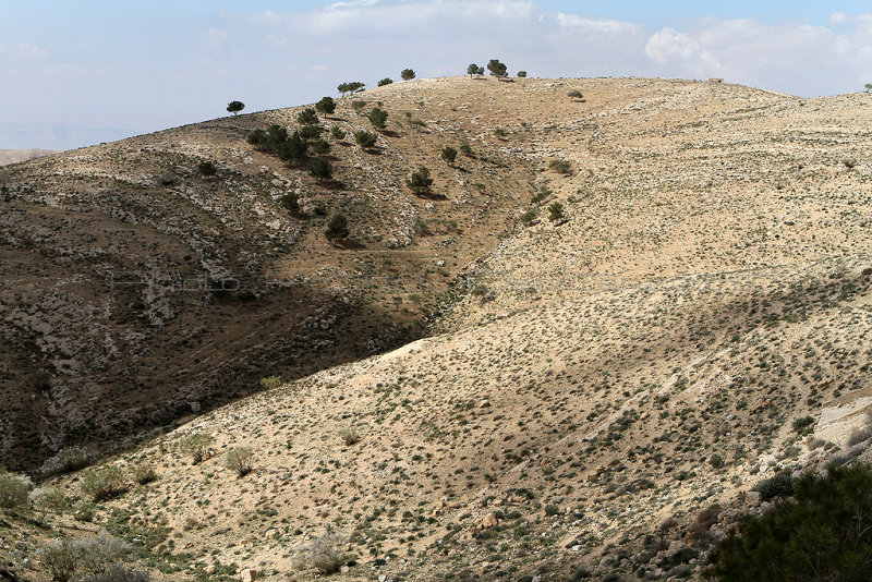 1014 Voyage en Jordanie - IMG_1515_DxO Pbase.jpg