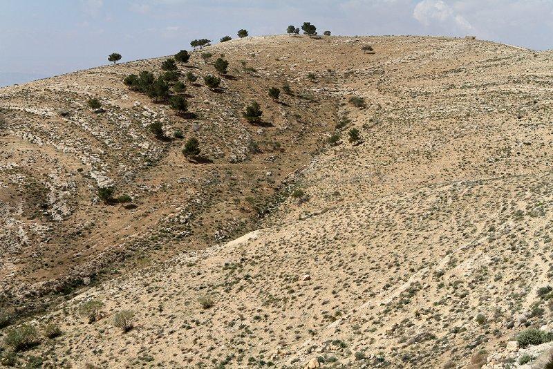 1016 Voyage en Jordanie - IMG_1517_DxO Pbase.jpg