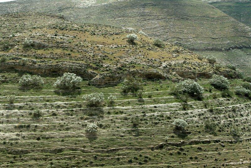 1109 Voyage en Jordanie - IMG_1618_DxO Pbase.jpg