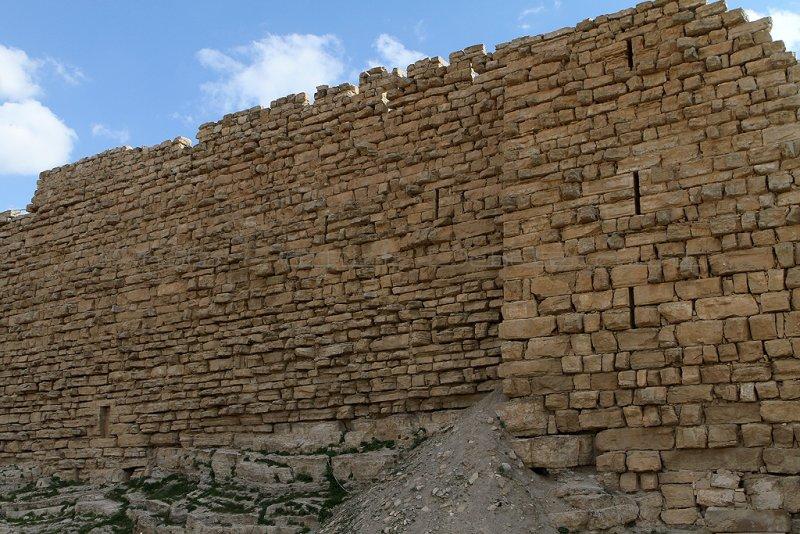 1244 Voyage en Jordanie - IMG_1754_DxO Pbase.jpg