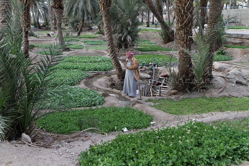 2807 Voyage en Jordanie - IMG_3323_DxO web2.jpg
