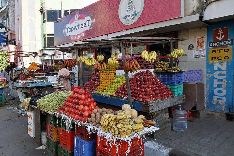 228 - South India 2 weeks trip - 2 semaines en Inde du sud - IMG_8456_DxO WEB.jpg