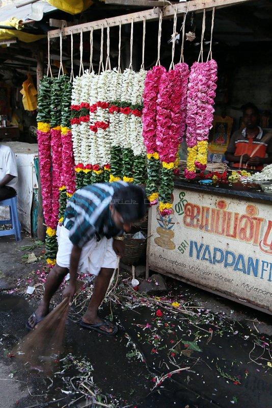 351 - South India 2 weeks trip - 2 semaines en Inde du sud - IMG_8580_DxO WEB.jpg