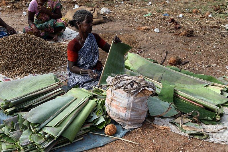 1219 - South India 2 weeks trip - 2 semaines en Inde du sud - IMG_9462_DxO WEB.jpg