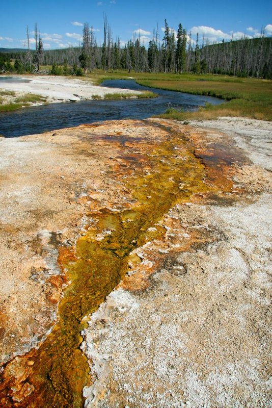 Iron Spring Creek, Yellowstone National Park