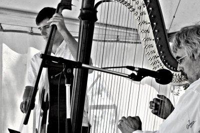 IMG_9129 Harpe Jazz July 21