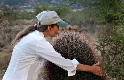 Cactus hugger or acupuncture? IMG_9765.jpg