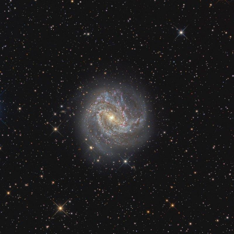 M83 in Hydra