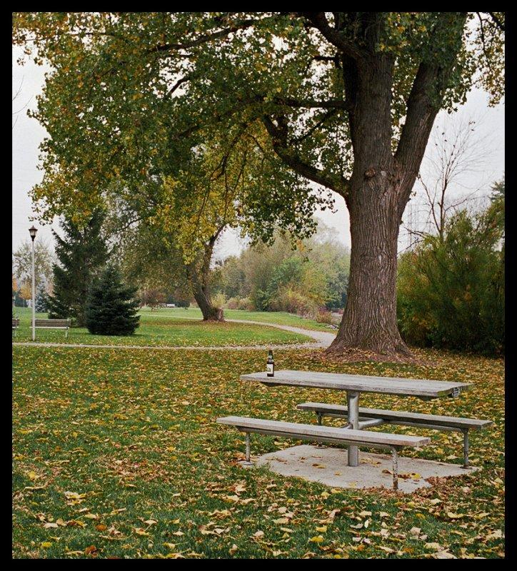 Fall day.jpg