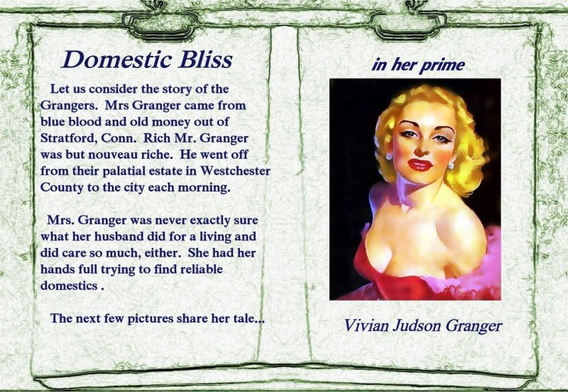 domestic bliss: book 1