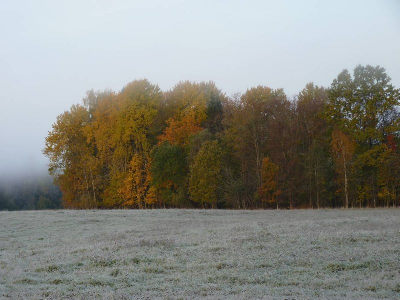 Cold autumn morning near Mengele
