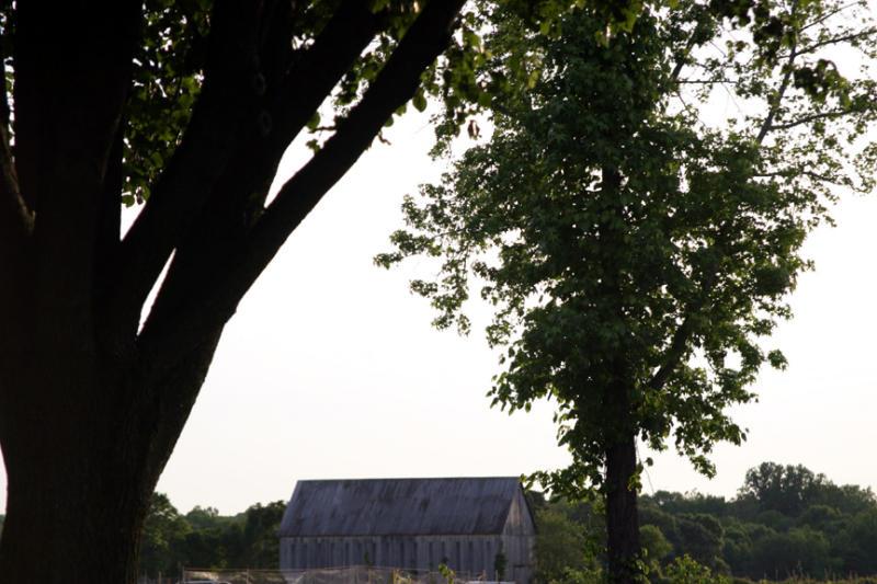 Mitchellville Barn.jpg