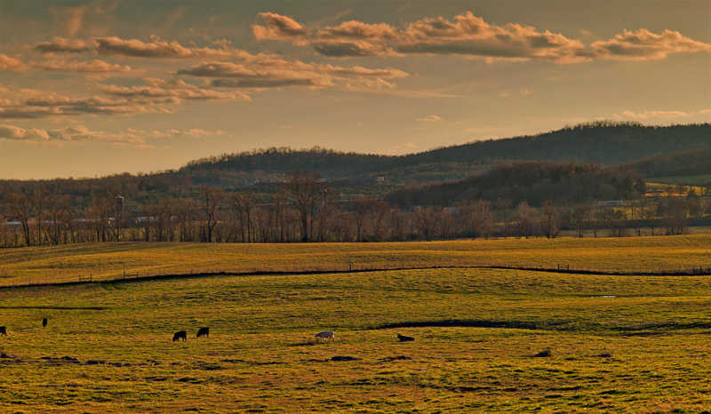Middle Tennessee Farm