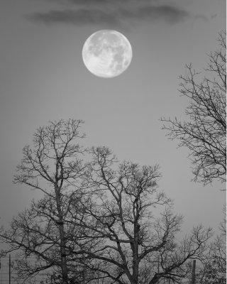 Gaither Mountain Moonset at Dawn