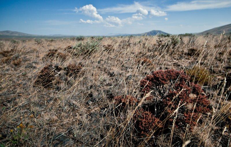 Manastash Ridge <br> (BTcd2_071812-89-8.jpg)