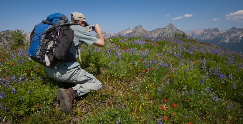 Photographing Flowers At Maple Pass <br> (MaplePass_081112-232-4.jpg)