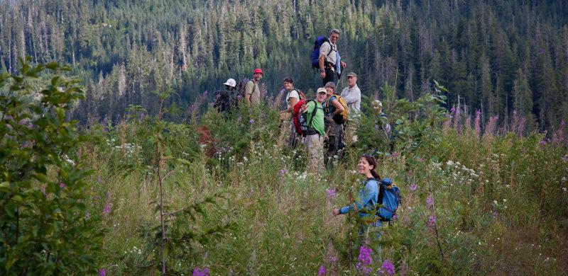 The Least Brushy Spot On The Trip <br>(Loomis_090512-128-4.jpg)
