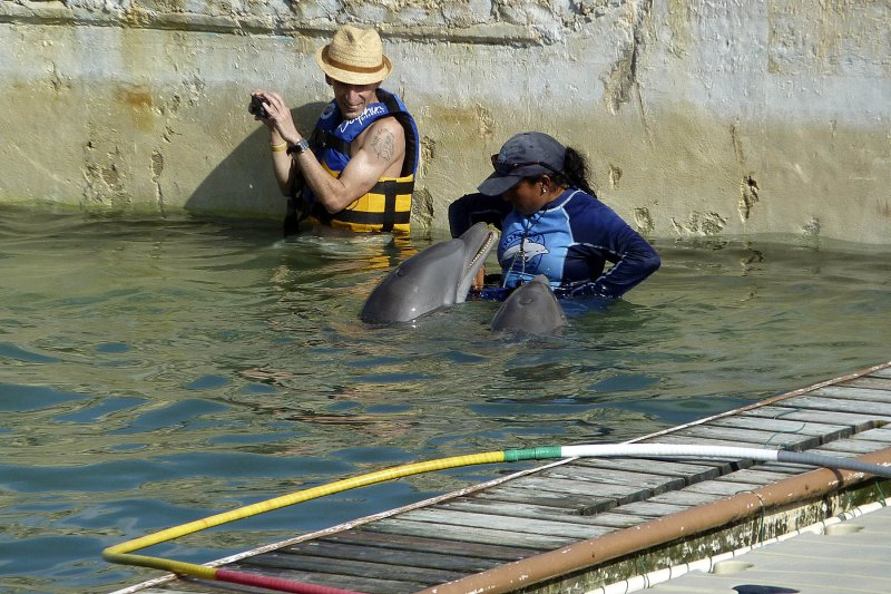 Cozumel had a dolphin swim right at the port.  Im not a PETA person, but Im not sure I liked this operation.