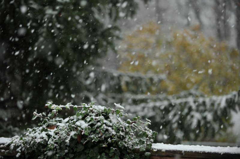 First snow of the season