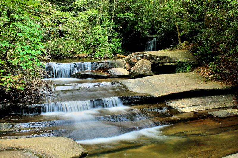 Trail To Mill Creek Falls, This Carrick Creek