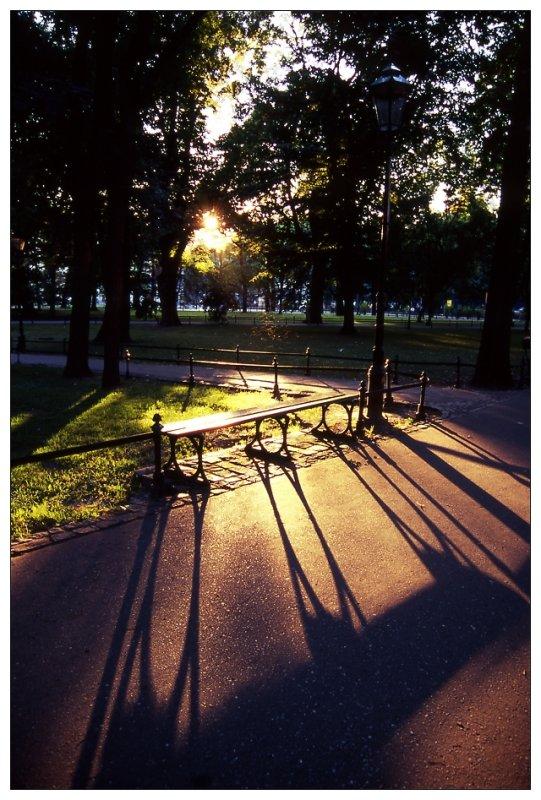 Sunset at Planty Park