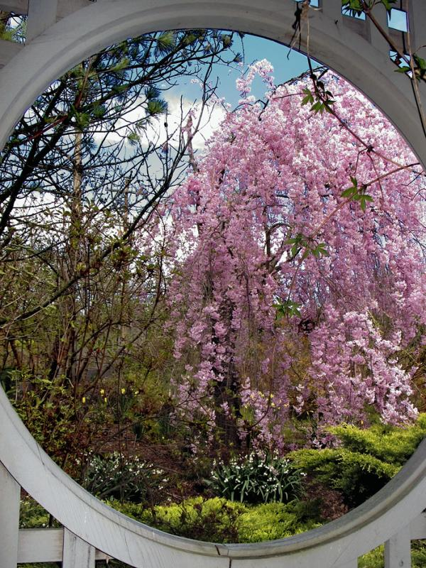 Portal Into Spring