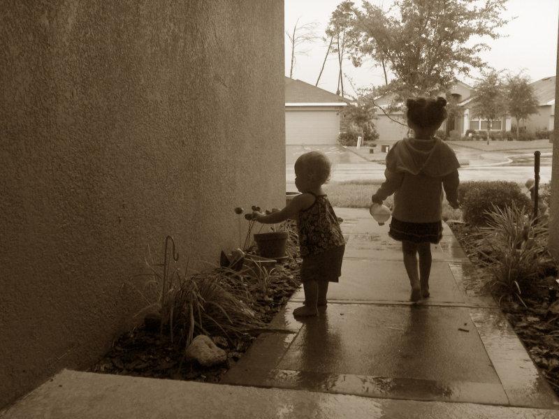 rainsepia