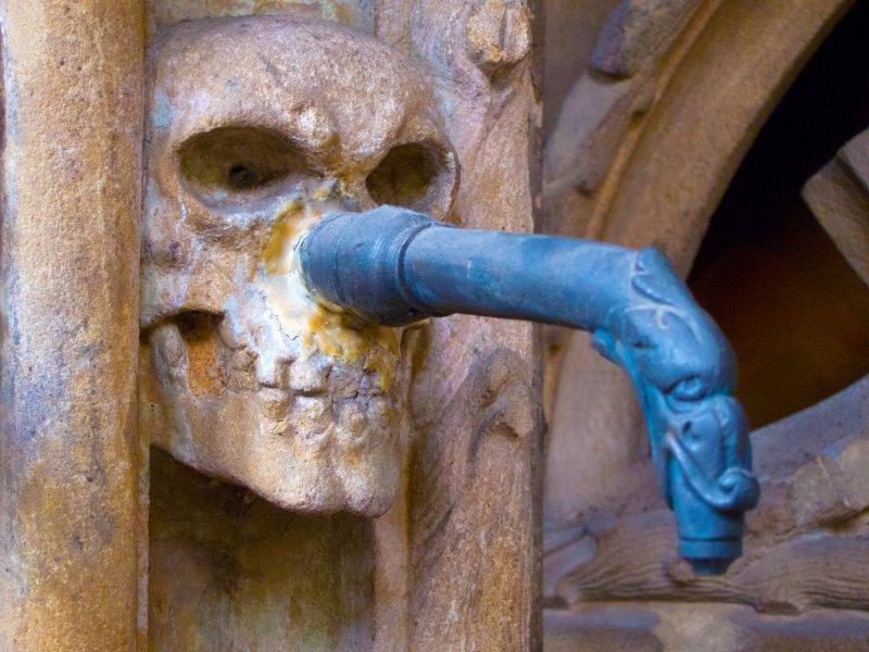 Munster Detail 3