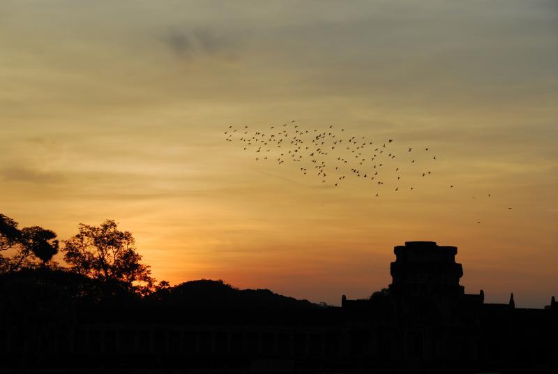 Dawn at Angkor Wat II