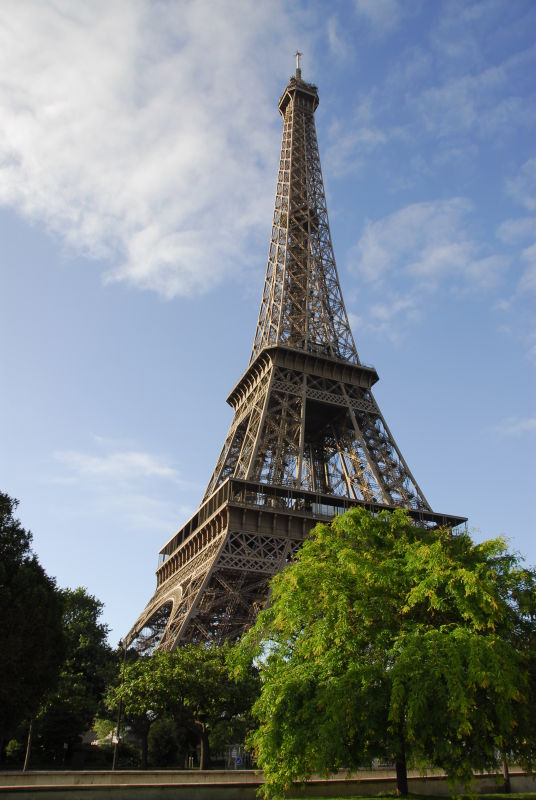 Eiffel and Tree