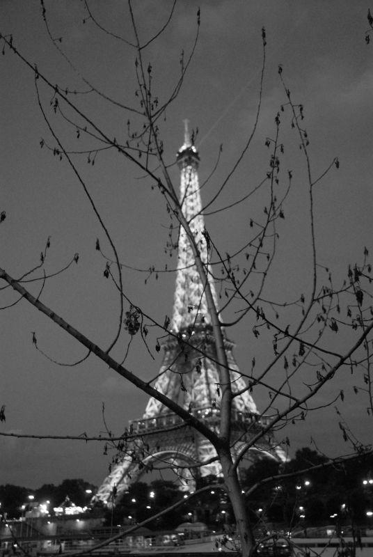 Eiffel and Twigs