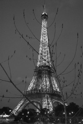 Eiffel Twigs 2