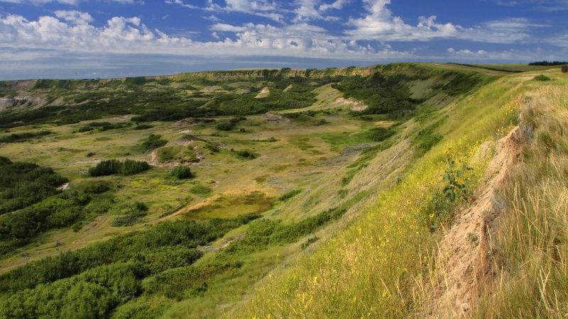 Dry Island Buffalo Jump August 2011