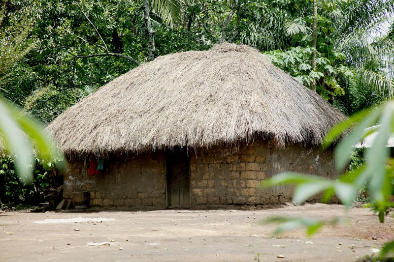 Thatched dwelling, Mbaw Plain