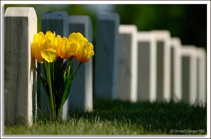 JB-Cemetery_D2X_5907b.jpg