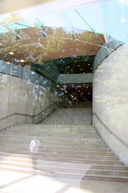 Chef at NYU Student Center Entrance - Reflections