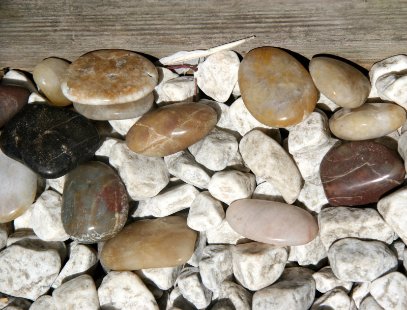 Stones on a Garden Path