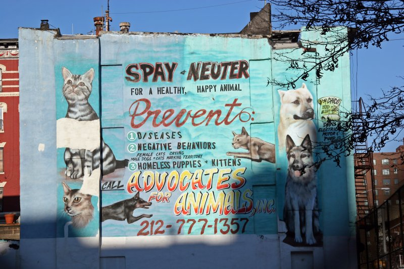 Advocates for Animals Billboard from East 11th Street