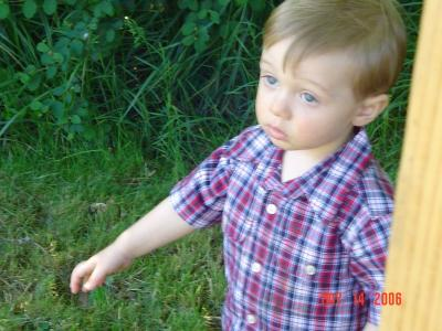 Susies grandson, Brett-16 months