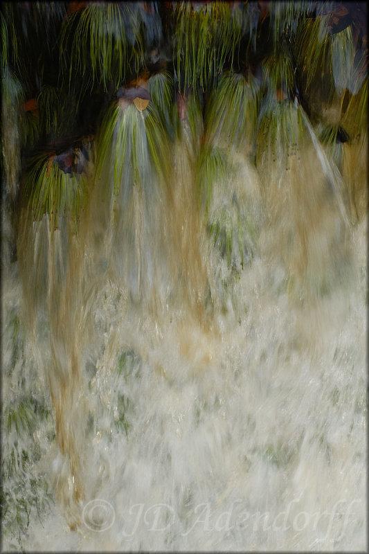 Waterfall, Harold Porter Botanical Garden