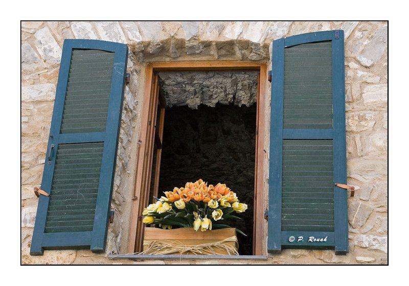 Apricale : Fenêtre sur cours
