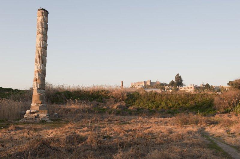 Selcuk Artemis Temple March 2011 3478.jpg