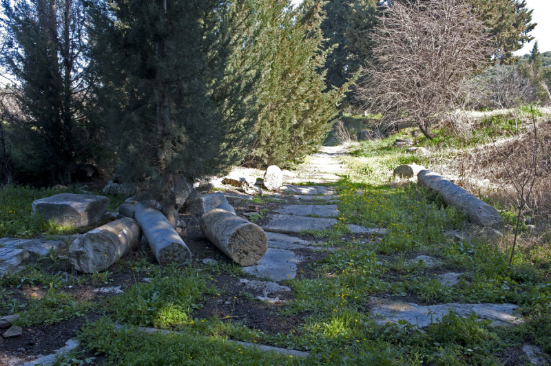 Ephesus March 2011 3515.jpg